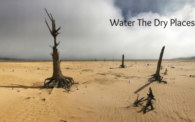 Water The Dry Places
