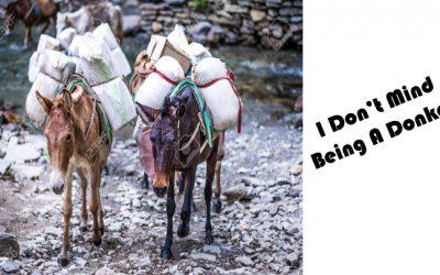I Don't Mind Being a Donkey