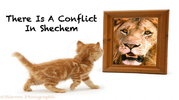 Conflict in Shechem